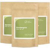 Bio Gerstengras Pulver, 125 g, 3er Pack