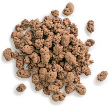 Bio Maulbeeren in Rohkost-Schokolade, 100 g