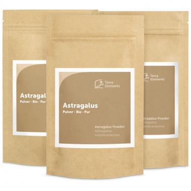 Bio Astragalus Pulver, 100 g, 3er Pack