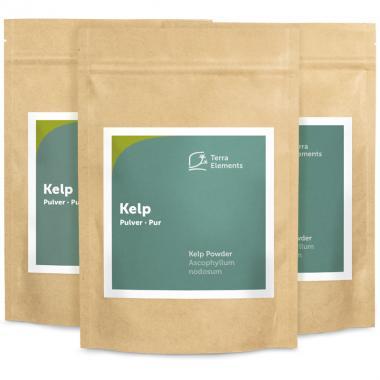 Kelp Pulver, 250 g, 3er Pack