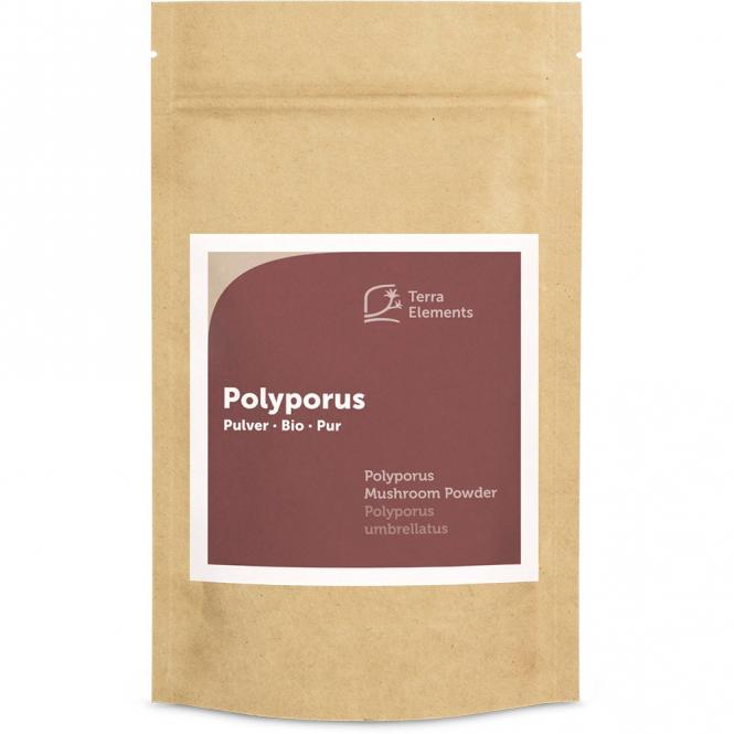 Bio Polyporus Pulver, 100 g