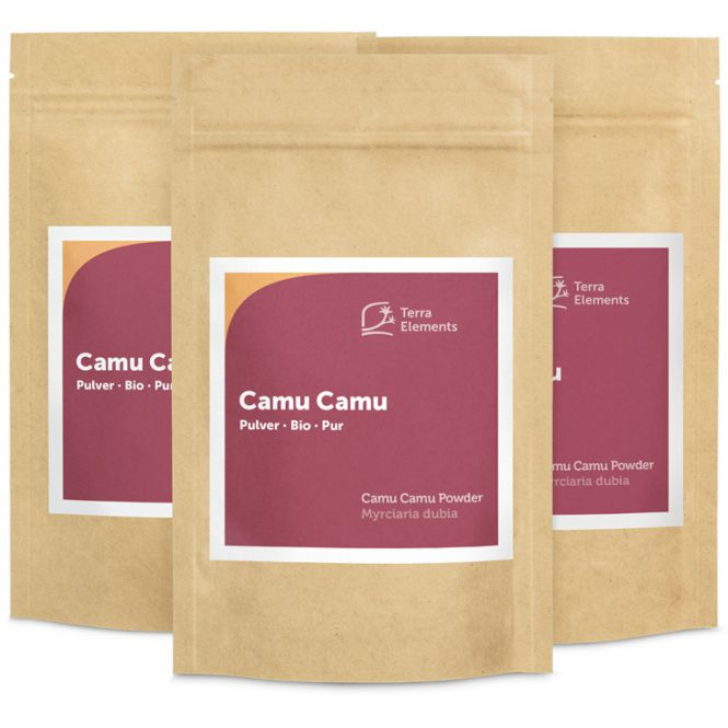 bio camu camu pulver 100 g 3er pack terra elements. Black Bedroom Furniture Sets. Home Design Ideas