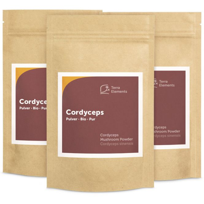 Bio Cordyceps Pulver, 100 g, 3er Pack