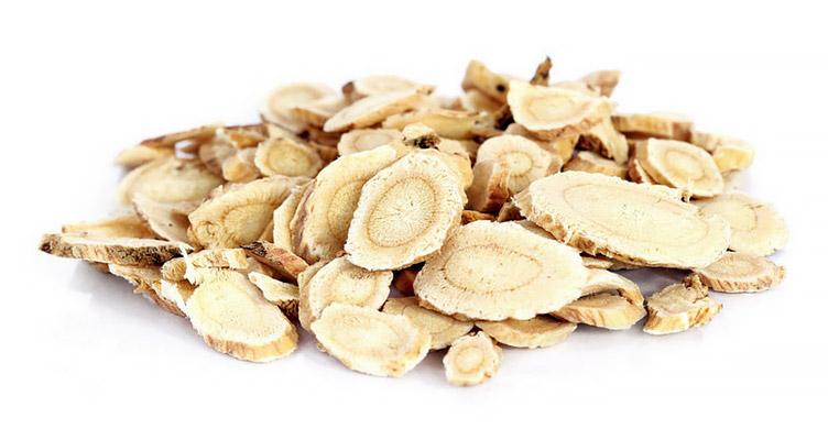 Astragalus membranaceus – Carpe Diem mit der Super-Wurzel
